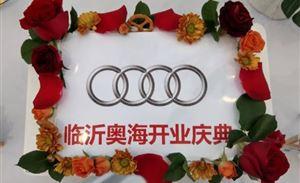 """""""非凡之奥• 海领未来""""临沂奥海奥迪4S店盛典开业"""